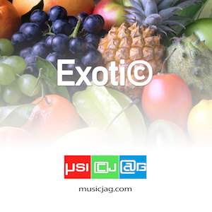A large selection of music for production. Mood Exotic.